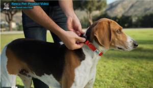 Rescu Pet rescue  (RJ Vimeo)